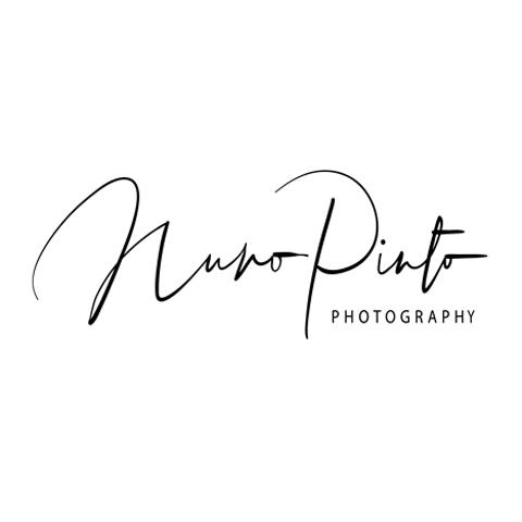 Nuno Pinto profile picture